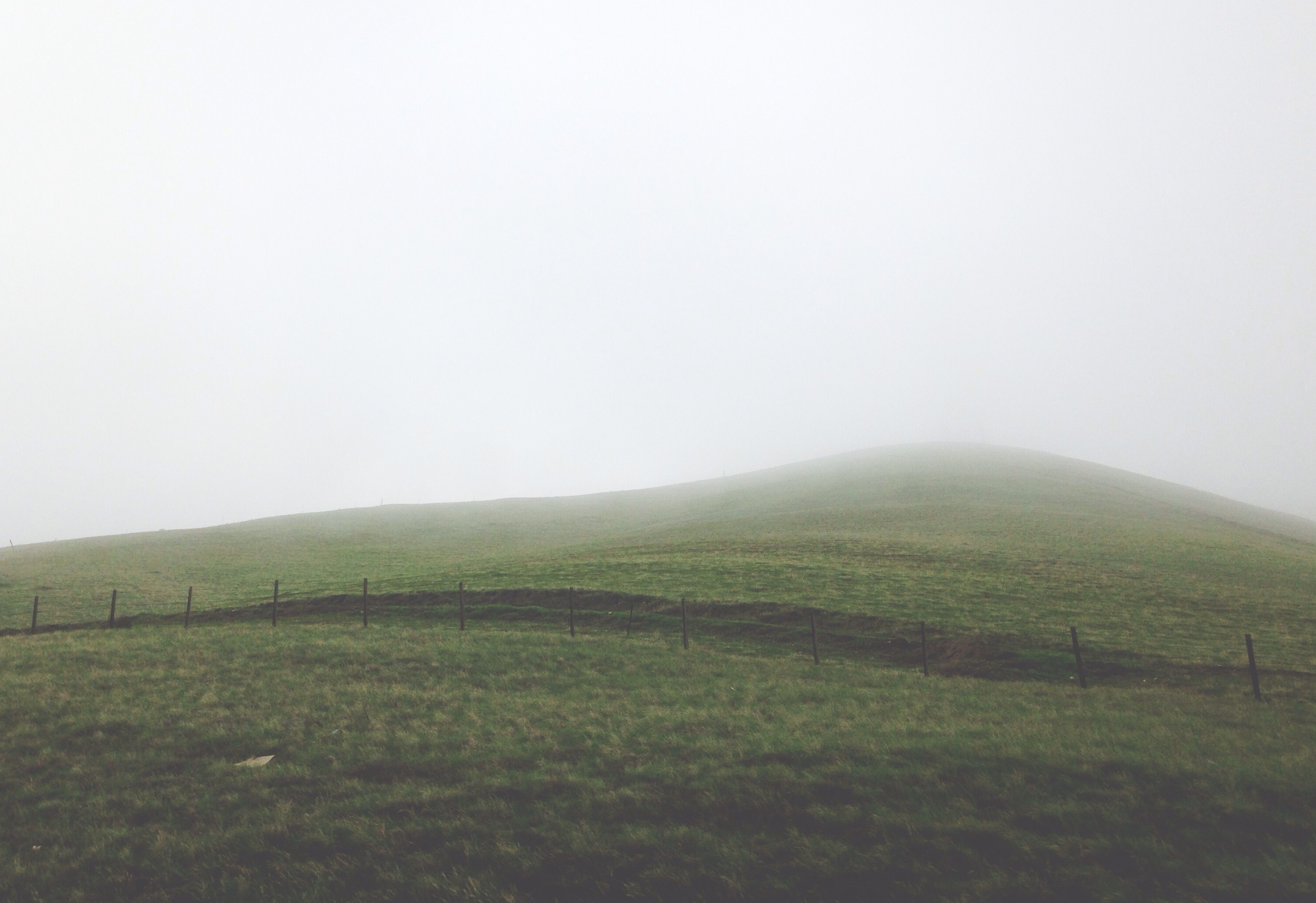 Foggy Hillside