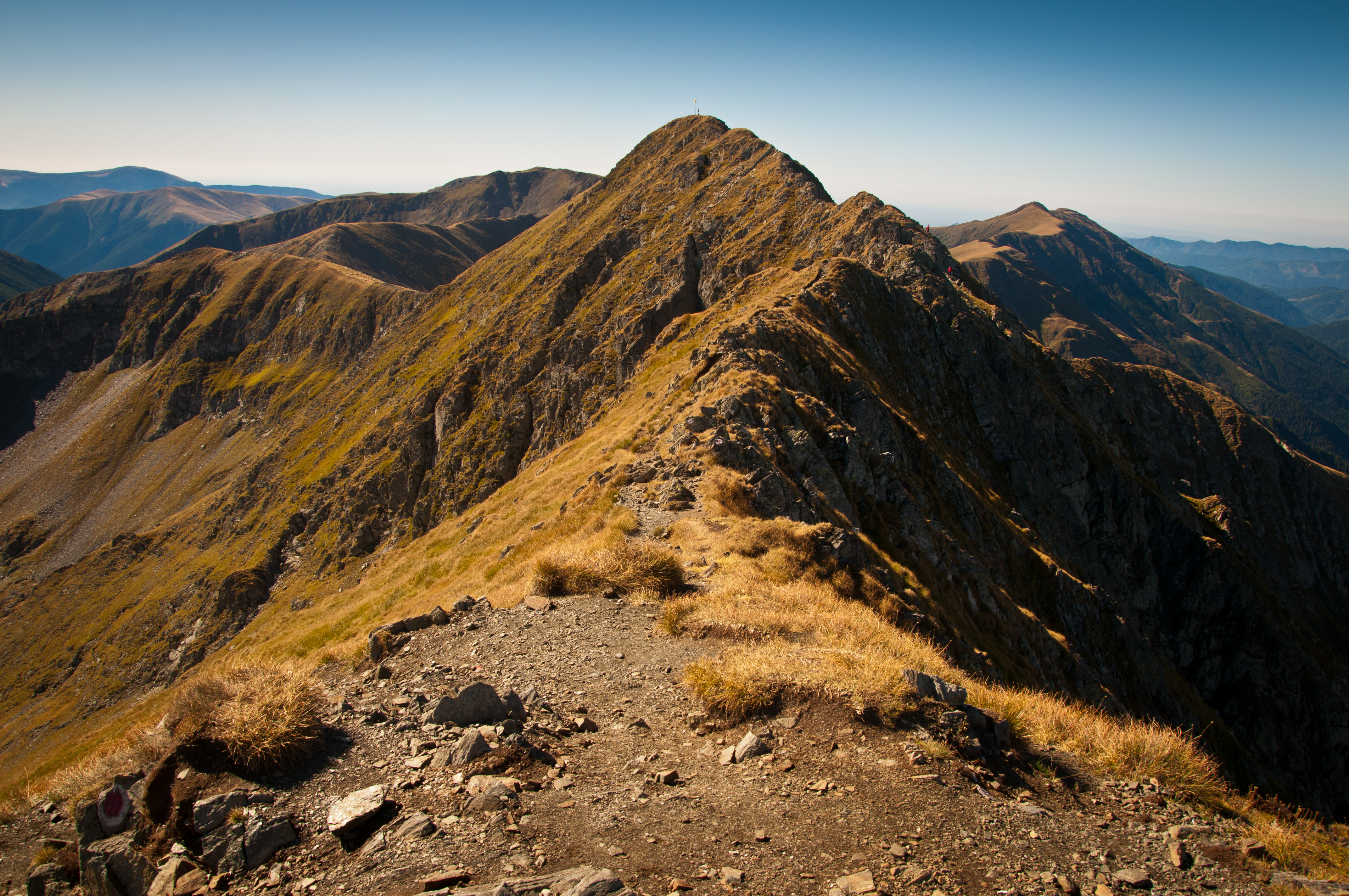 Atop the Ridge